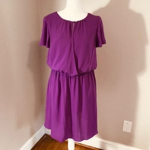 Banana Republic Flutter Sleeve Dress